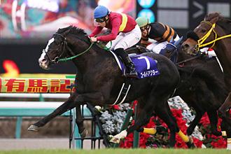 GI】「有馬記念」レース詳細 | 競馬データアンテナ